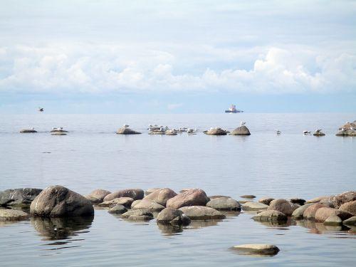 gulf of finland sea stones