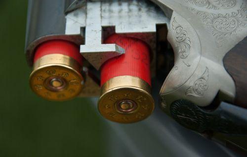 gun canon cartridges