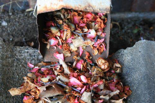 Gutter Spilling Leaves And Petals