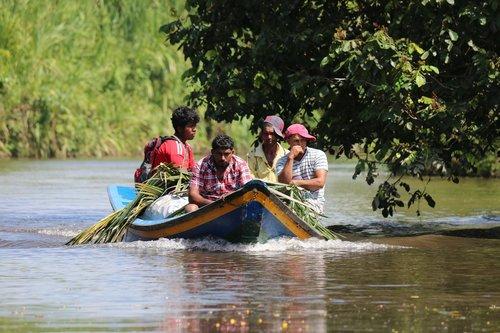 guyana  farmer  sugarcane