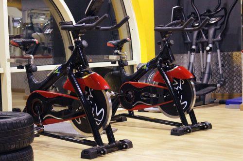 gym fitness sport