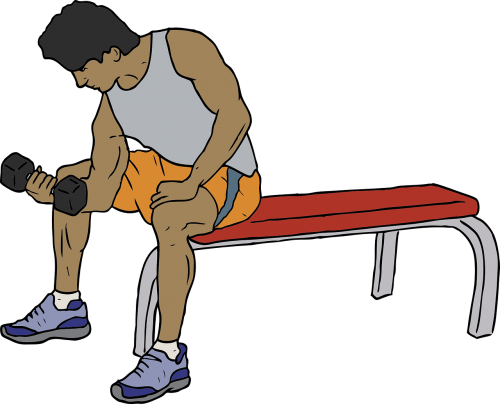 gym bench weight