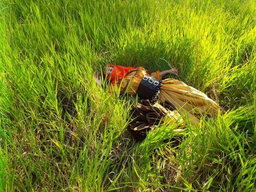 gypsy meadows fantasy
