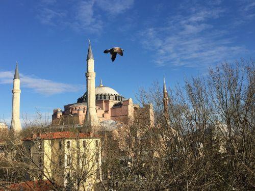 hagia sophia istanbul sultanahmet