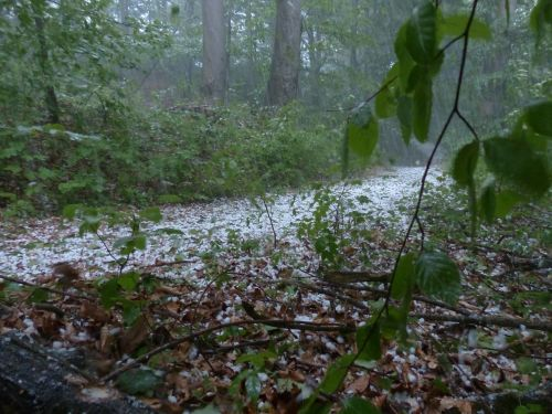 hail storm thunderstorm