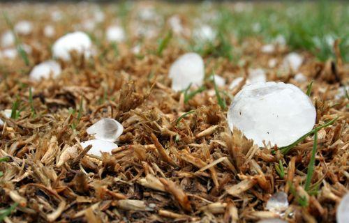 hailstone storm highveld