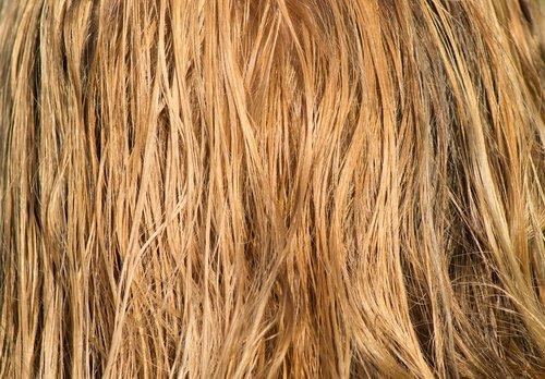 hair  blond  wet