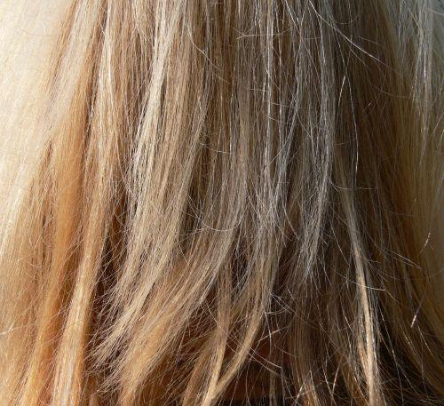 hair blond long hair