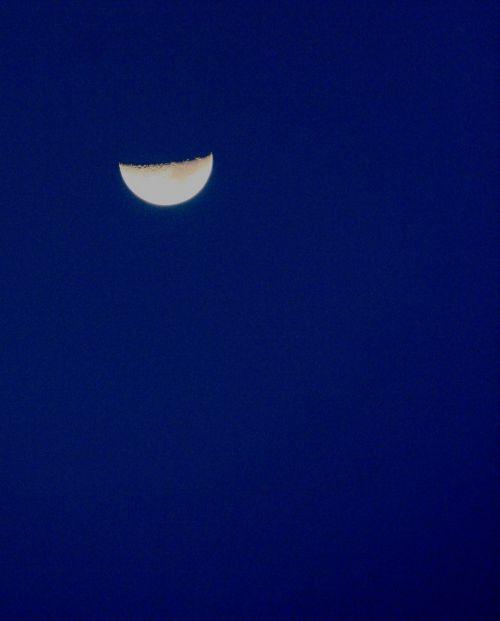 Half Moon Growing