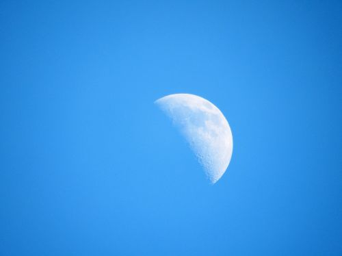 Half Moon In Daylight