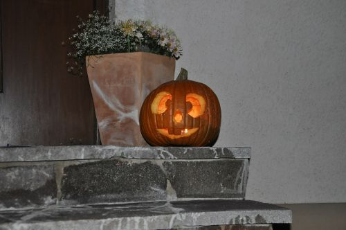 halloween pumpkin autumn