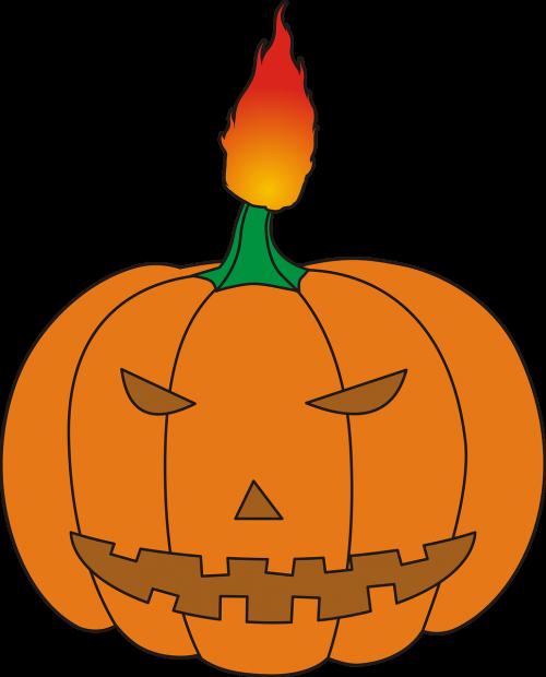 halloween pumpkin ornamental pumpkins