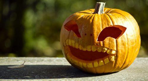 halloween pumpkin halloweenkuerbis