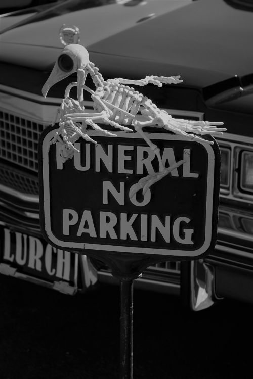 halloween lurch skeleton