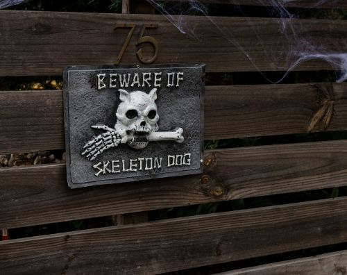 halloween skull bones