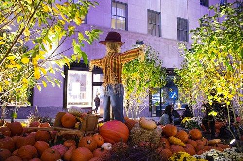 halloween  halloween at rockefeller centre  pumpkins