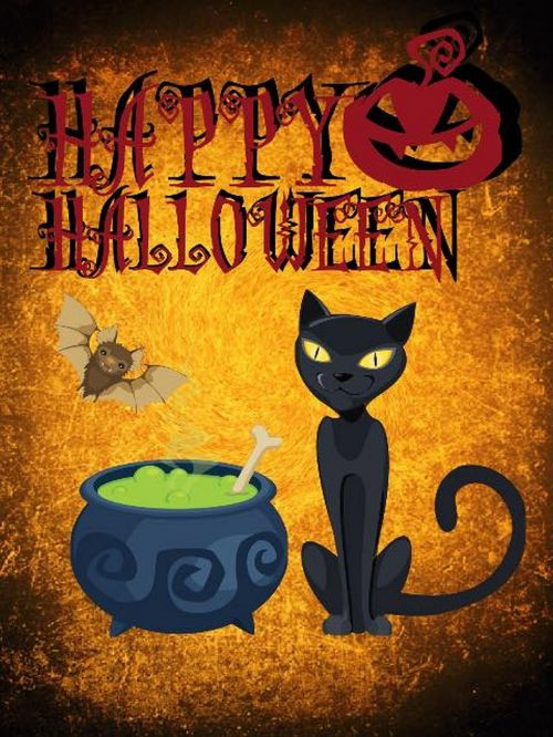 halloween cat atmosphere