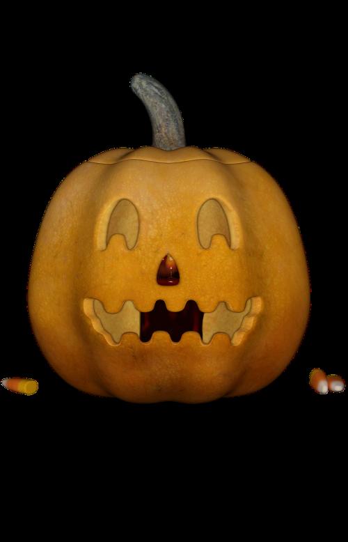 halloweenkuerbis halloween pumpkin