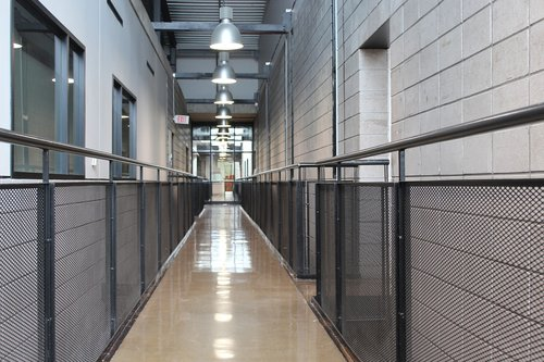 hallway  track lighting  lights