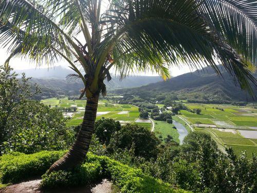 hanalei kauai kauai hawaii
