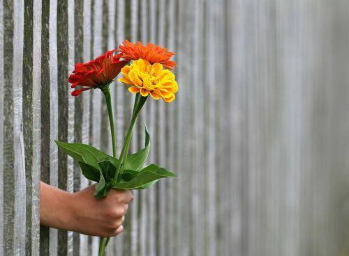 hand gift bouquet