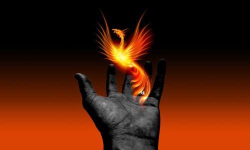 hand phoenix gradient