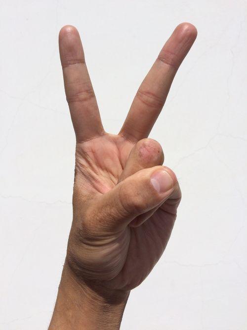 palm hand finger