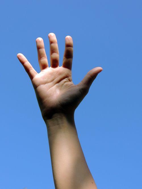 hand body human