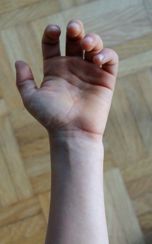 hand fingers veins