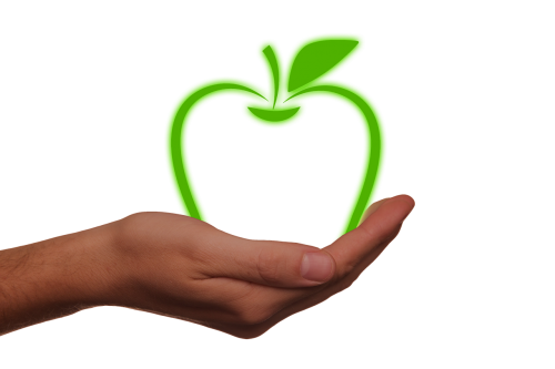 hand keep apple