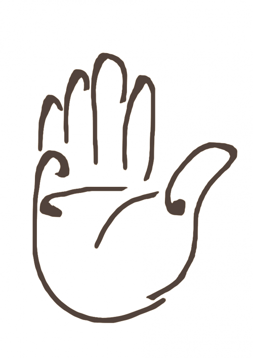 hand fingers five