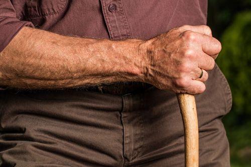 hand walking stick arm