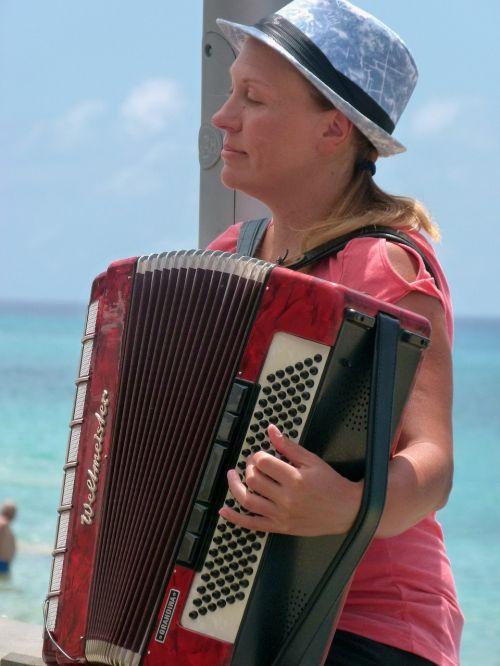 hand-harmonica music accordion