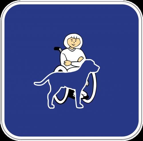 handicap companion dog service dog