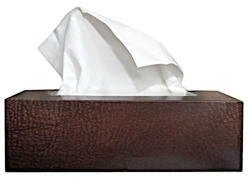 handkerchief cold cry