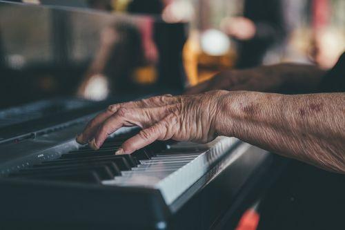 hands instrument musician