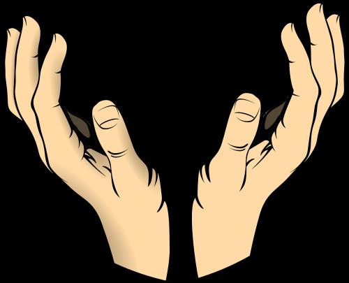 hands human body