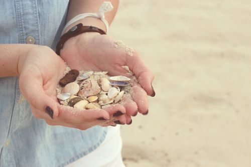 hands seashells beach