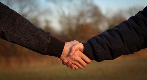 handshake  hand giving  hand holding