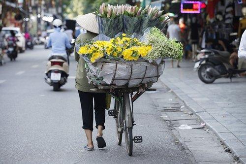 hanoi capital  hanoi flower  flower street of vietnam