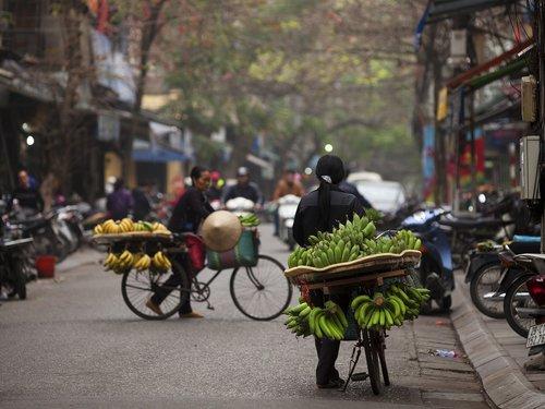 hanoi street food  banana bike  fruit bike in hanoi
