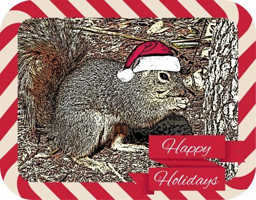 Happy Holiday Squirrel