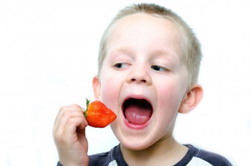 Happy Little Boy Eats Strawberries