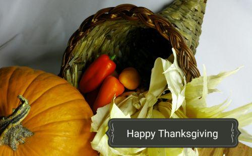 padėka, gausa, rugšvis, moliūgas, pipirai, pasveikinimas, pasveikinimas su dėkingumu