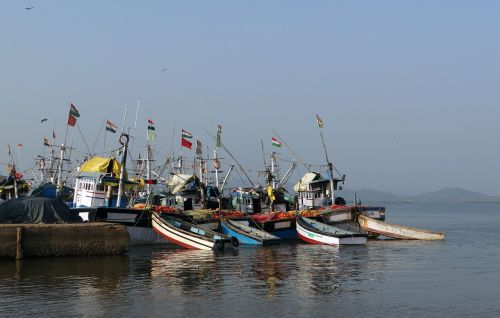 harbour fishing boats