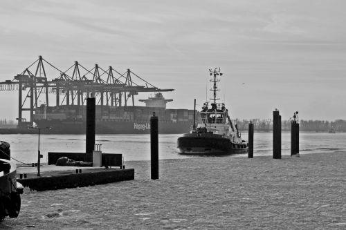 harbour cruise port motifs monochrome