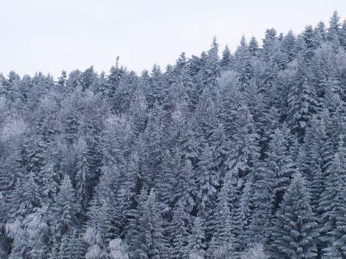 hard rime mountains snow