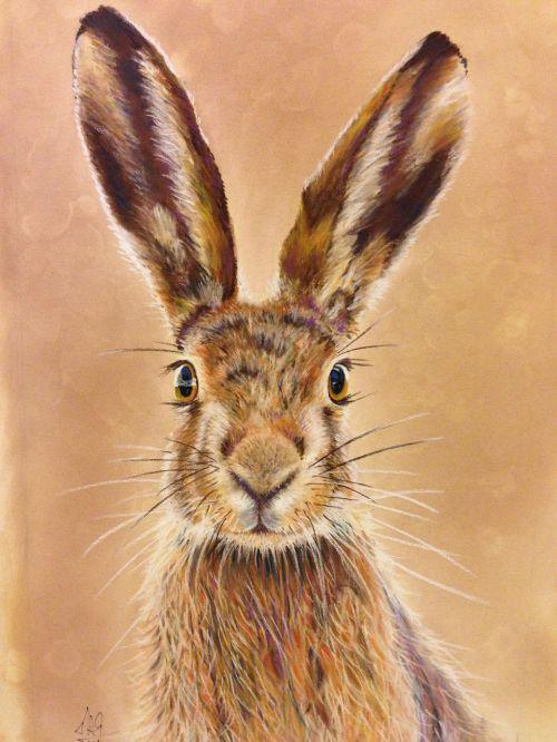 hare pastel pencils artistic