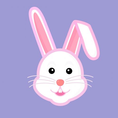 hare bunny magician