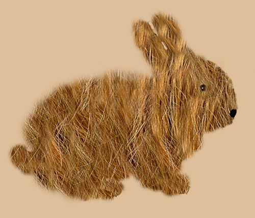 hare rodent rabbit
